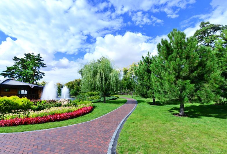 Summer park 00978