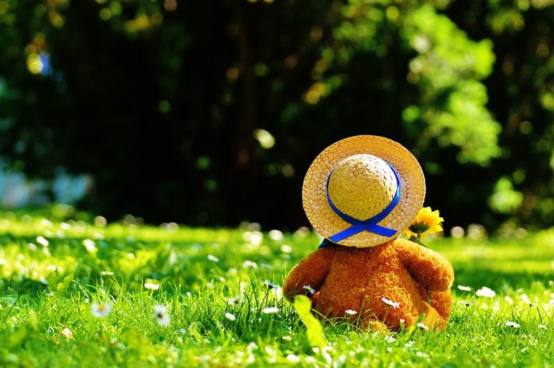 Teddy bear 00682