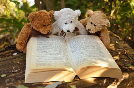 Teddy bear with a book 00683