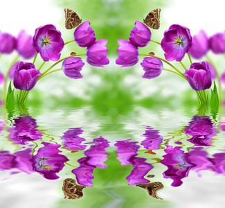 цветочная арка 01124