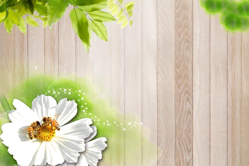 цветок 01125