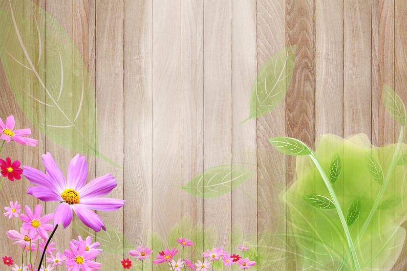 цветы 01127