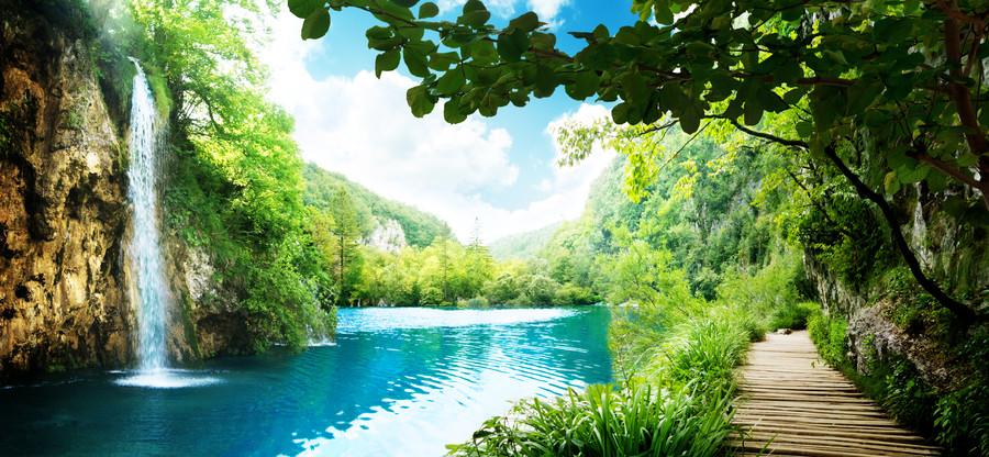 Way in deep forest of Croatia 00465